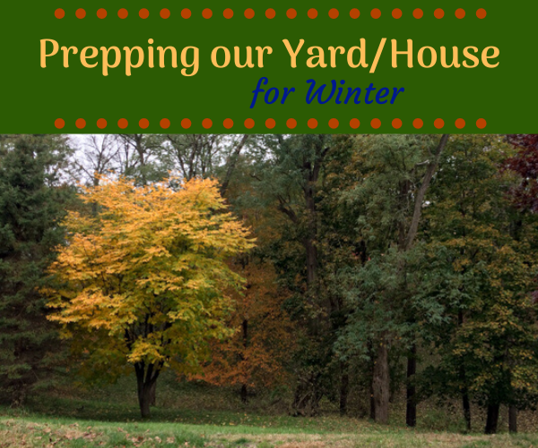 Prepping our yard/House for Winter